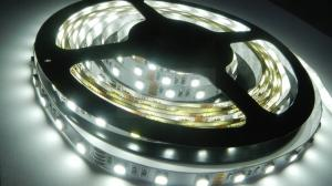 Лента LED PROLUM™ 12V IP20 5050/60 STANDARD Белый (5500-6000К)